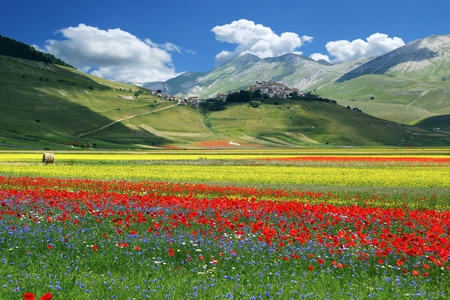 Blossoming time in a wonderful Italian valley Stock Photo - 87759790