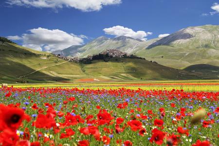 Bloeiende tijd in een prachtige Italiaanse vallei Stockfoto