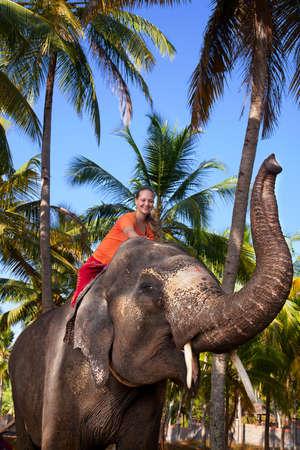 elefanten: Junge sch�ne Frau Reiten auf gro�en Elefanten mit Trunk bis in Palmenwald. Indien, Kerala