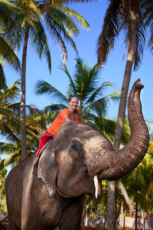 Young beautiful woman riding on big elephant with trunk up in palm forest. India, Kerala
