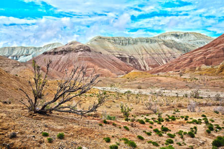 Beautiful scenery of Aktau mountains in national park Altyn Emel in Kazakhstan, Central Asia photo