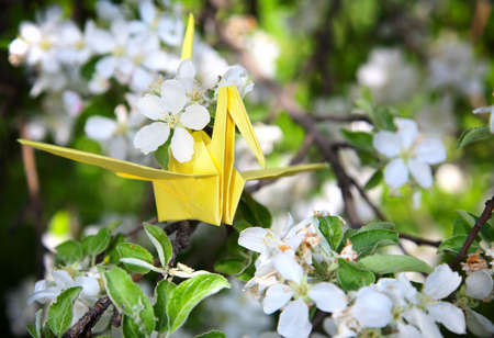 One origami paper yellow crane is sitting on the branch of blooming tree with white flowers around photo