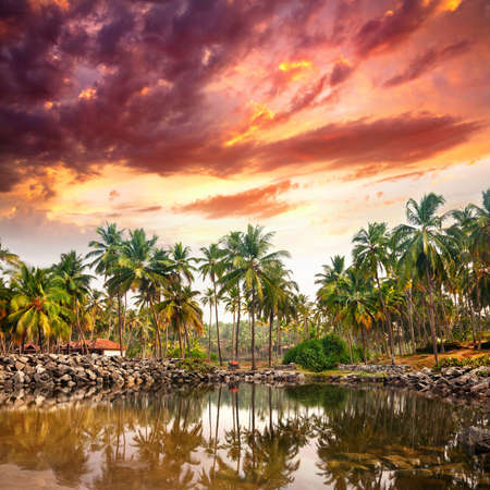 india fisherman: Tropical resort in palm tree forest near the lake at purple dramatic sunset background in Varkala, Kerala, India