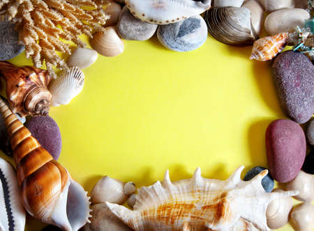 Seashells, coral and stones around yellow paper with free space for text photo