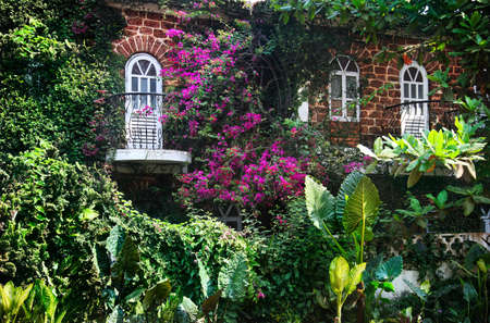 House with two windows and balconies with many plants and magenta flowers around in Goa, India photo