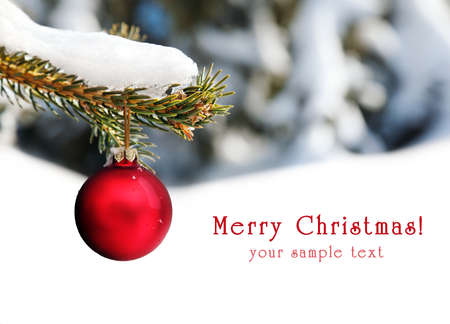 Christmas red ball hanging on the branch at snow tree background with free space for your text photo