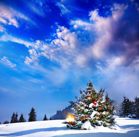 Christmas tree with lights in mountain snow forest at dramatic evening background