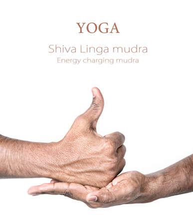 shiva: Les mains dans Shiva Linga mudra par Indien isol� � fond blanc. Geste de charge de l'�nergie. Lib�rez de l'espace pour votre texte