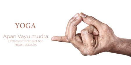 mudra: Hands in Apan Vayu mudra by Indian man isolated at white background. Gesture also called as lifesaver: first aid for heart attacks. Free space for your text Stock Photo
