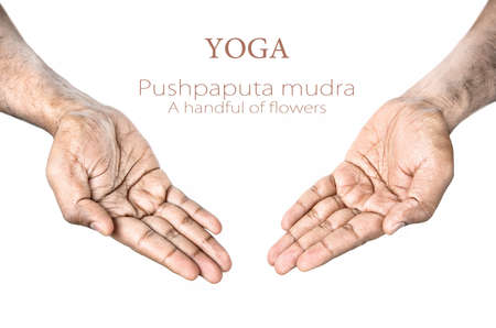 Hands in Pushpaputa mudra by Indian man isolated at white background. Free space for your text photo