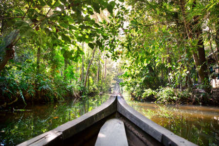 Wooden boat cruise in backwaters jungle in Kochin, Kerala, India photo