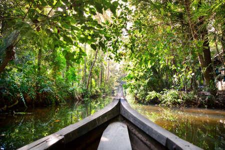 kerala backwaters: Wooden boat cruise in backwaters jungle in Kochin, Kerala, India Stock Photo