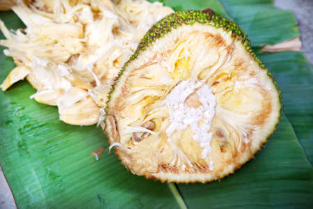 Cut Jack fruit and seeds on banana leaf background in Varkala, Kerala, India photo