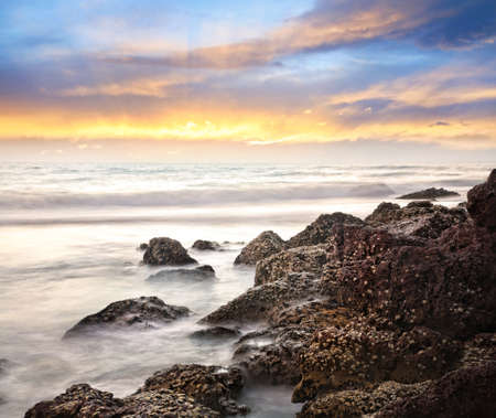 Sea and rock with crabs at sunset sky background in India, Kerala, Varkala photo