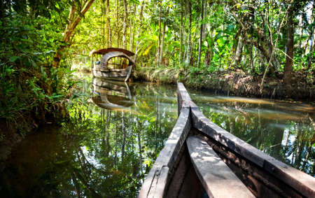 kerala: Wooden boat cruise in backwaters jungle in Kochin, Kerala, India Stock Photo