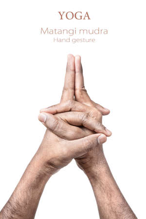 mudra: Hands in Matangi mudra by Indian man isolated on white background. Matangi is god of inner harmony and royal rulership. Free space for your text