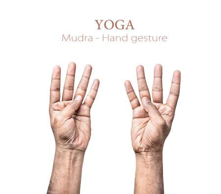paz interior: Las manos en mudra de indio aislado en fondo blanco. Espacio libre para su texto
