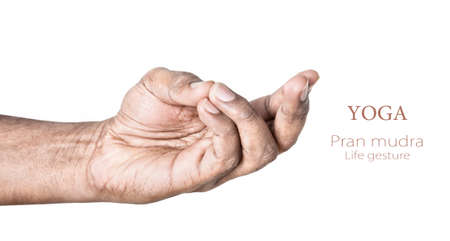 Hands in pran mudra by Indian man isolated on white background  Free space for your text Stock Photo