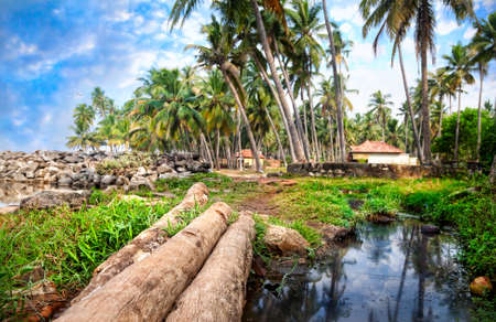 india fisherman: Tropical fisherman village in palm tree forest near the lake in Varkala, Kerala, India Stock Photo