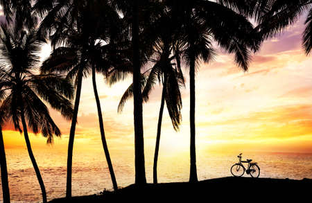 Bicycle silhouette on the beach near palm trees and ocean at sunset sky background in India photo