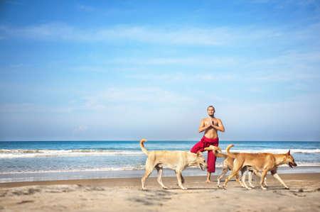 namaste: Yoga �rbol plantean por el hombre en pantalones rojos y los perros van delante de �l en la playa en el fondo marino