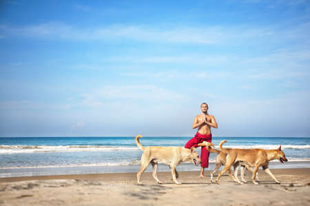 Yoga tree pose by man in red trousers and dogs going in front of him on the beach at ocean background  photo