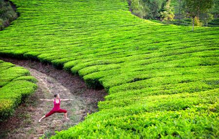 Yoga virabhadrasana II warr pose by woman in red cloth on tea plantations in Munnar hills, Kerala, India Stock Photo - 14625062