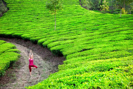 vriksasana: Yoga vrkshasana tree pose by woman in red cloth on tea plantations in Munnar hills, Kerala, India