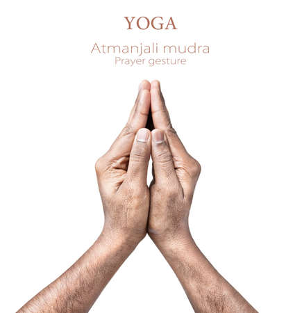 namaste: Hands in atmanjali prayer mudra by Indian man isolated on white background. Free space for your text Stock Photo