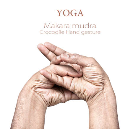 Hands in makara mudra by Indian man isolated on white background. Free space for your text Stock Photo