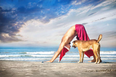 downward: Christmas yoga with dog by man in red trousers and Christmas hat on the beach near the ocean in India  Stock Photo