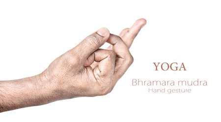 Hands in bhramara mudra by Indian man isolated on white background. Free space for your text photo
