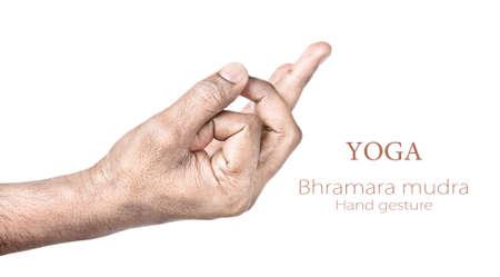 paz interior: Las manos en mudra Bhramara por el hombre indio aislado en el fondo blanco. Espacio libre para el texto