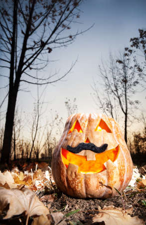 Funny halloween pumpkin with black moustache glowing inside at dark autumn forest background  photo