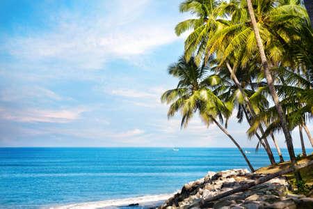 ヴァルカラ、ケララ州、インドの青い海の近くのビーチでヤシの木 写真素材