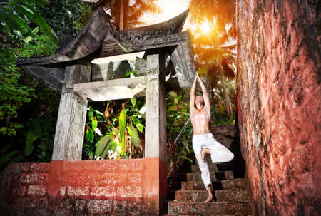 vriksasana: Yoga vrikshasana tree pose by man in white trousers near stone temple at sunset background in tropical forest