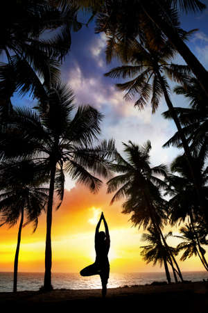 Yoga tree pose silhouette by man at palm trees, ocean and sunset sky background in India photo