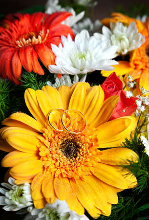 Two wedding rings on big orange flower with other flowers at background Stock Photo - 17005985