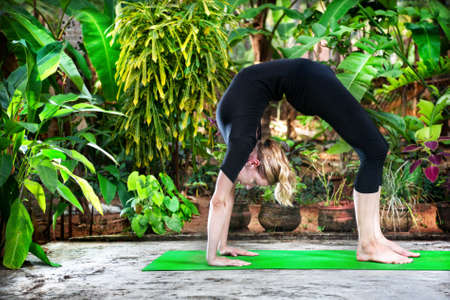 Yoga Chakrasana wheel pose by woman in black costume in the garden with palms, banana trees and plants in the pots photo