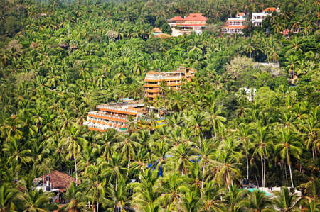 Resort in palm tree forest in Kovalam, Kerala, India   photo