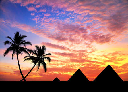egyptian pyramids: Egyptian Pyramids and palm trees in silhouette at orange sunset sky