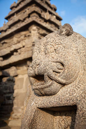 mamallapuram: Animal statue near Shore temple at blue sky in Mamallapuram, Tamil Nadu, India Stock Photo