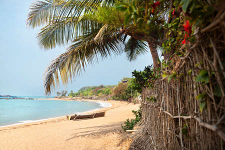 Tropical Om beach and coconut palm trees near the blue ocean in Gokarna, Karnataka, India photo