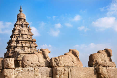 mamallapuram: Bull statues at blue sky in Shore temple, Mamallapuram, Tamil Nadu, India Stock Photo