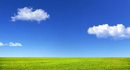 Groen gras en blauwe lucht met witte wolken Stockfoto