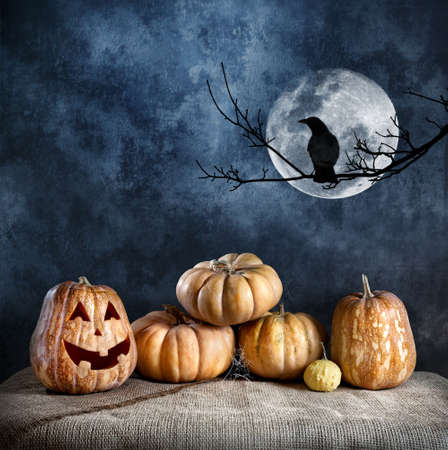 Halloween pumpkins and crow on the branch at full moon and textured dark background photo