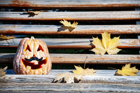 Halloween funny pumpkin with moustache on the wooden bench in the park photo