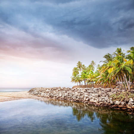 Tropical beach with coconut palm trees near the blue ocean at overcast dramatic sky in Varkala, Kerala, India photo