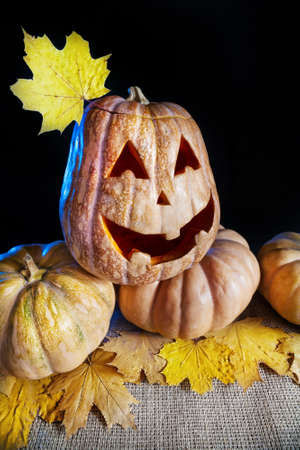 Halloween pumpkin with yellow maple leave at black background photo