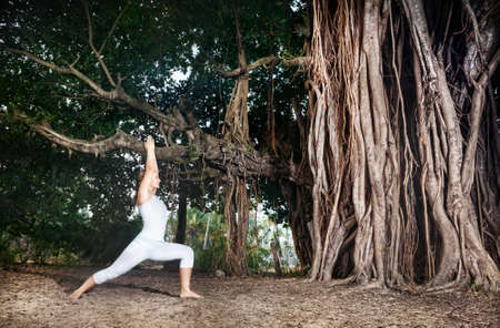 yogini: Woman in white costume doing Yoga warrior pose near big banyan tree in Goa, India